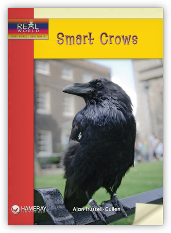 Smart Crows