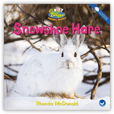 Snowshoe Hare Big Book