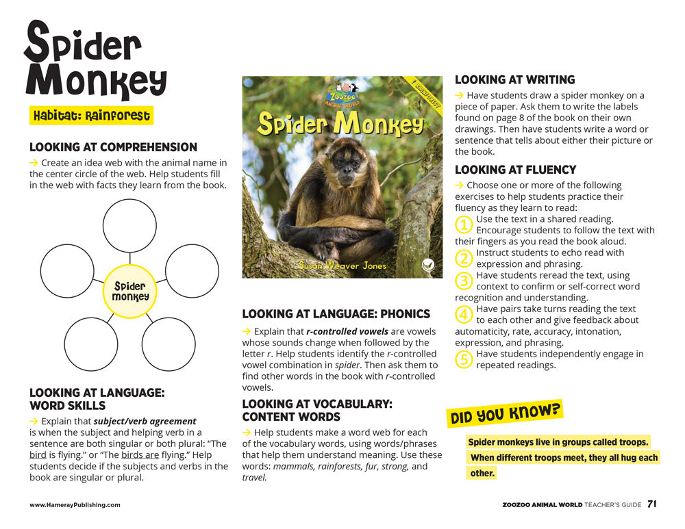 Spider Monkey Teacher's Guide