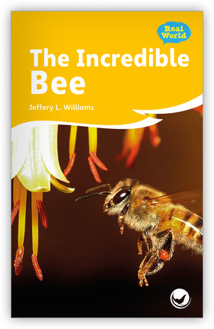 The Incredible Bee