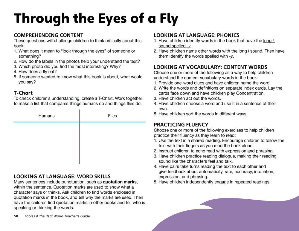 Through the Eyes of a Fly Teacher's Guide