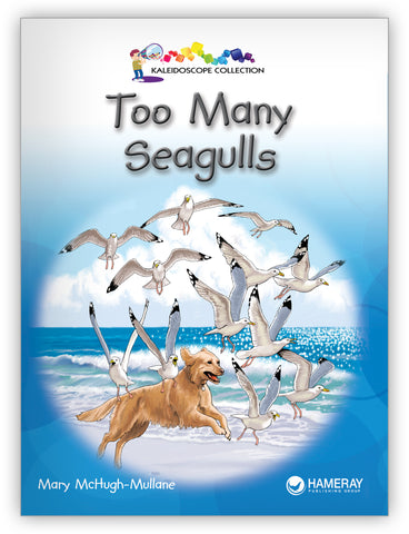 Too Many Seagulls