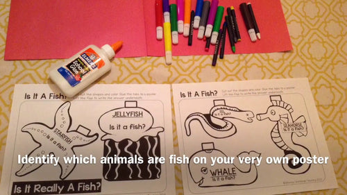 """Fish or Not"" Poster Activity"