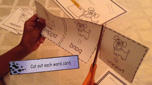 Mirror Vocabulary Activity