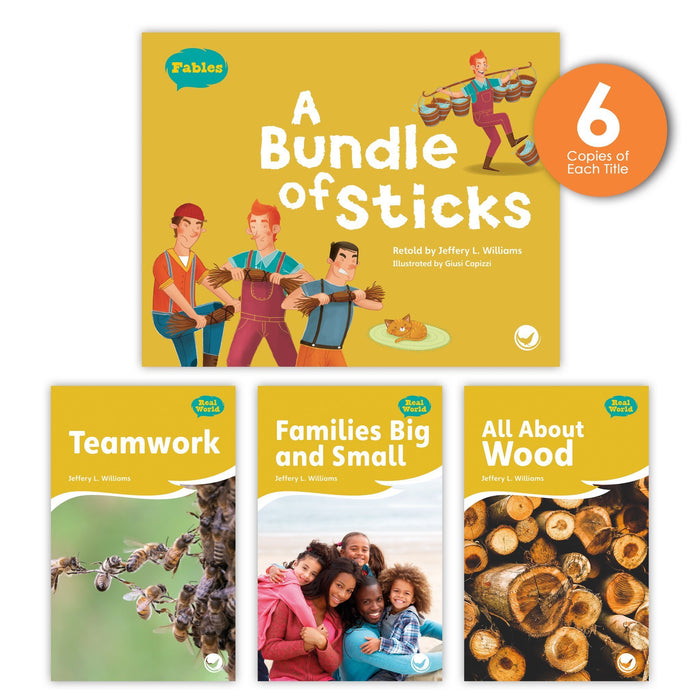 A Bundle Of Sticks Theme Guided Reading Set Image Book Set