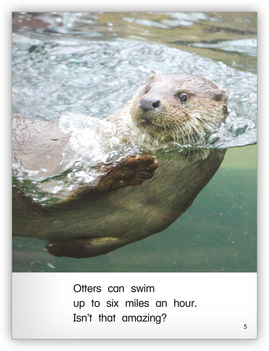 Amazing Otters Leveled Book