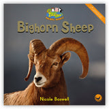 Bighorn Sheep Leveled Book