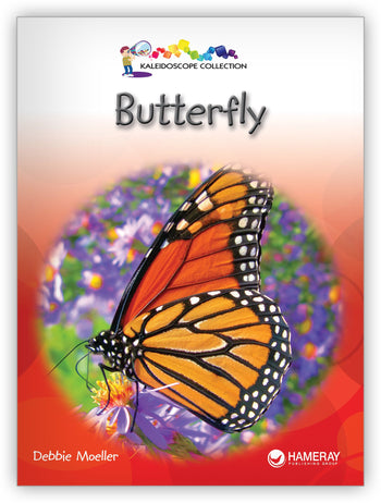 Butterfly Big Book from Kaleidoscope Collection