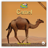Camel from Zoozoo Animal World