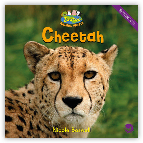 Cheetah Big Book from Zoozoo Animal World