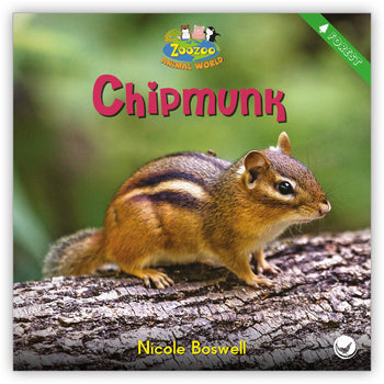 Chipmunk from Zoozoo Animal World