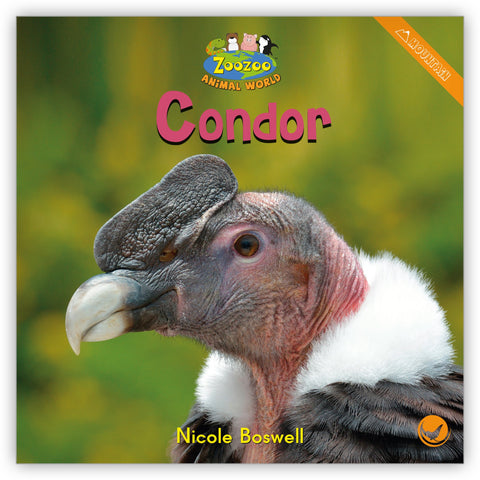 Condor Big Book from Zoozoo Animal World