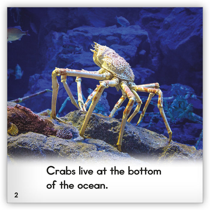 Crab Big Book