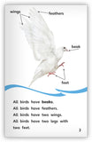 Doves Big Book