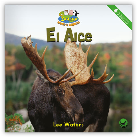 El alce from Zoozoo Mundo Animal