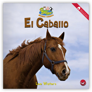 El caballo from Zoozoo Mundo Animal