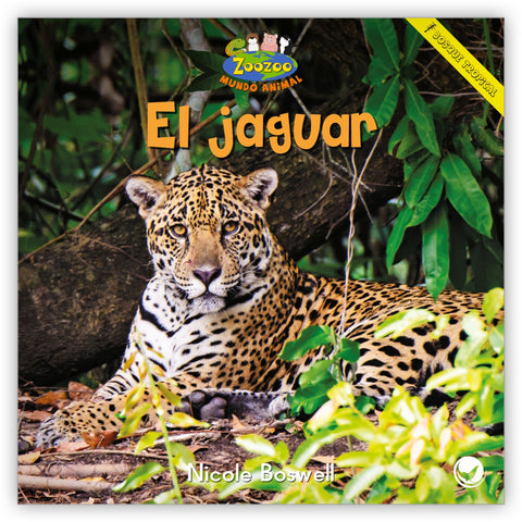 El jaguar from Zoozoo Mundo Animal