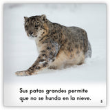 El leopardo de nieve from Zoozoo Mundo Animal
