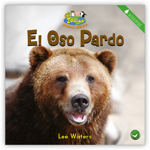 El oso pardo from Zoozoo Mundo Animal