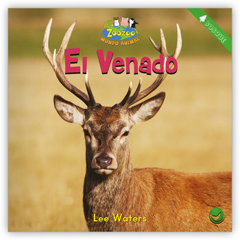 El venado from Zoozoo Mundo Animal