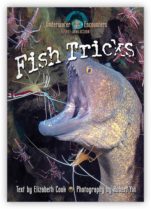 Fish Tricks from Underwater Encounters