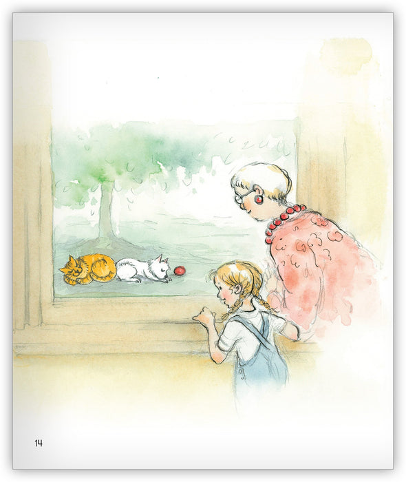 Greedy Cat and the Visitor from Joy Cowley Classics