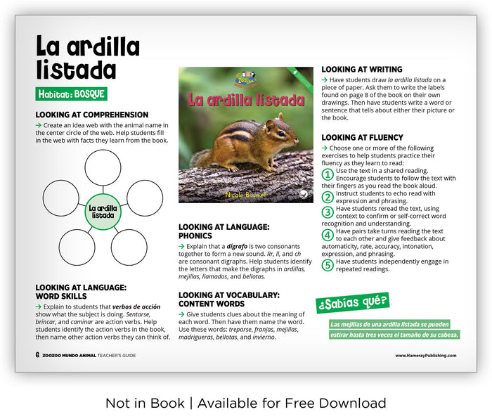 La ardilla listada from Zoozoo Mundo Animal