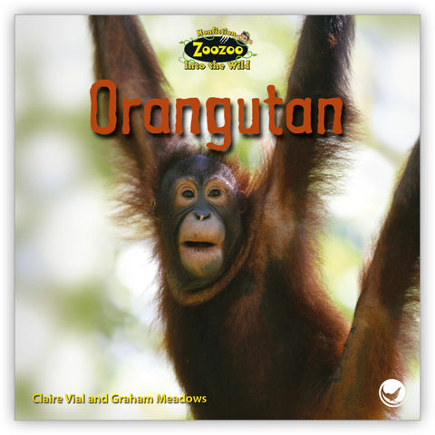 Orangutan from Zoozoo Into the Wild