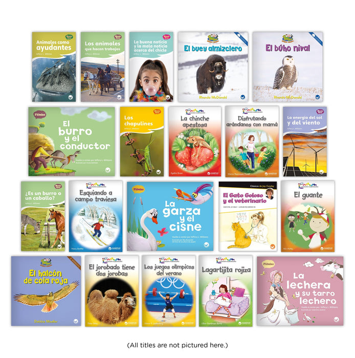 Spanish Level H Guided Reading Set