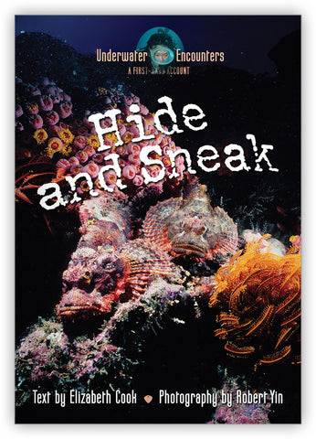 Hide and Sneak from Underwater Encounters
