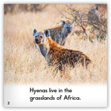 Hyena Big Book