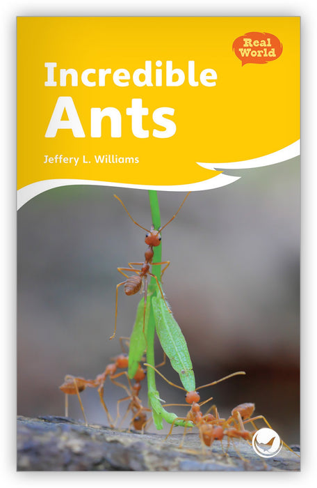 Incredible Ants Leveled Book