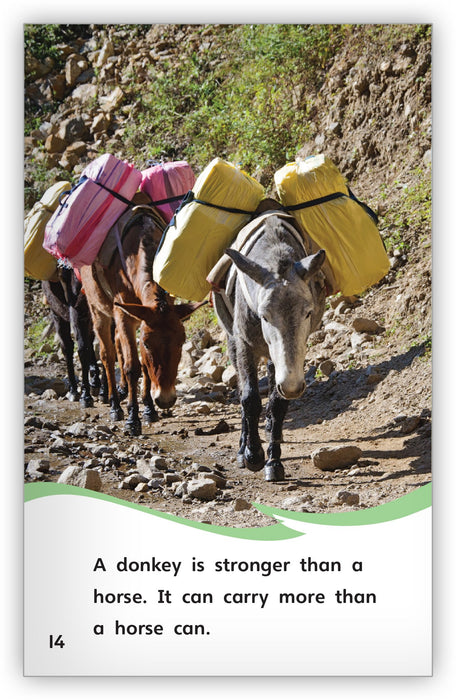 Is It a Donkey or a Horse? from Fables & the Real World