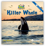 Killer Whale from Zoozoo Animal World