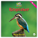 Kingfisher from Zoozoo Animal World