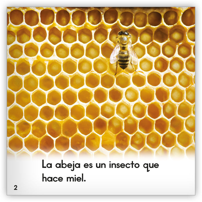 La abeja Leveled Book
