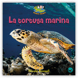 La tortuga marina from Zoozoo Mundo Animal