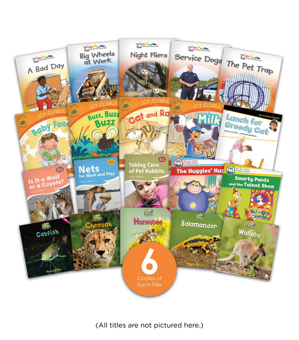 Level F Guided Reading Set Image Book Set