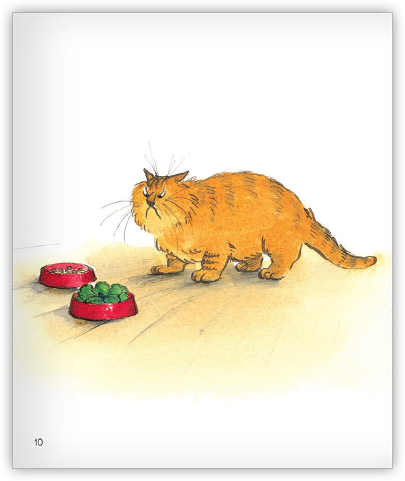 Lunch for Greedy Cat Leveled Book