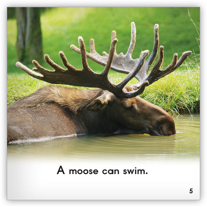 Moose Leveled Book