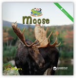 Moose from Zoozoo Animal World