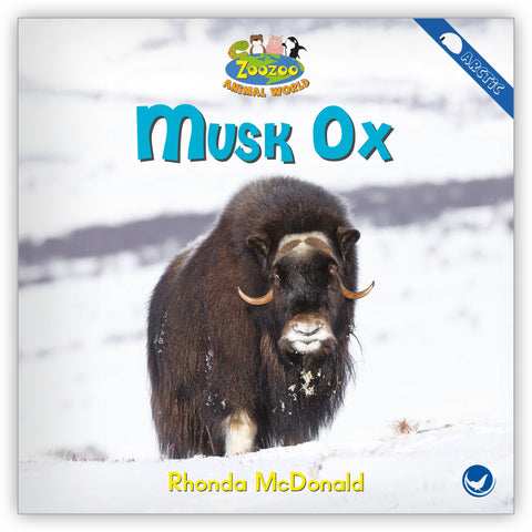 Musk Ox from Zoozoo Animal World