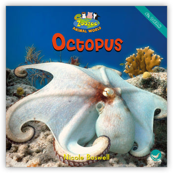 Octopus from Zoozoo Animal World