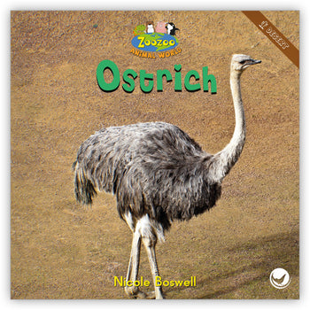 Ostrich from Zoozoo Animal World