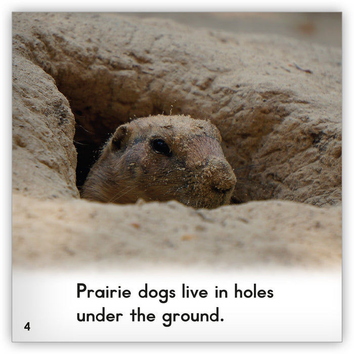 Prairie Dog Leveled Book