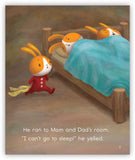 Rabbit Bedtime Leveled Book