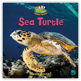 Sea Turtle Leveled Book
