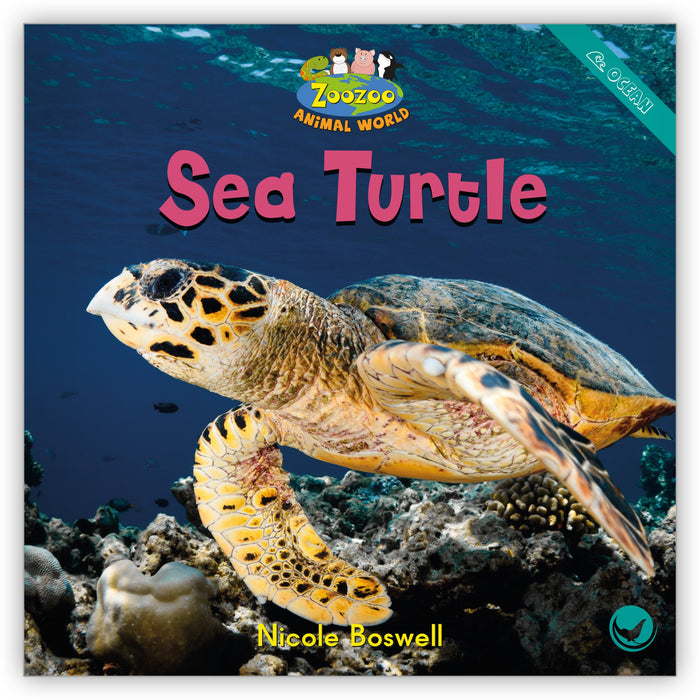 Sea Turtle from Zoozoo Animal World