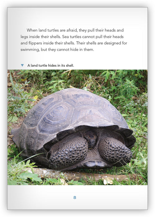 Sea Turtles Leveled Book