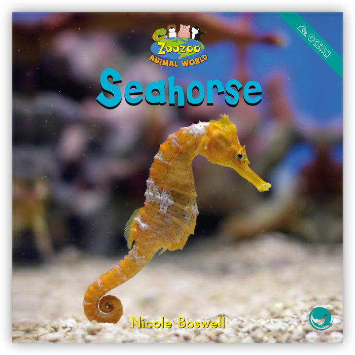 Seahorse from Zoozoo Animal World